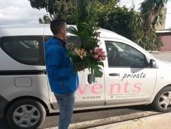 livraison de fleurs Tanger